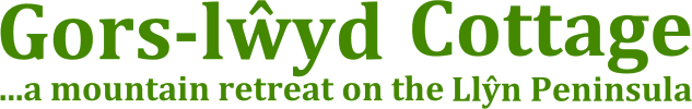 welsh break logo
