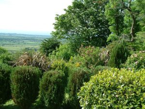 View of the garden in summer Gors-lwyd Cottage Llithfaen Llyn Peninsula North Wales