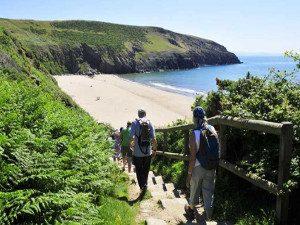 A view of Porth Ceiriad beach and steps Wales Coast Path Llyn Peninsula