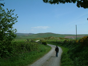 Country lanes at the start of the coastal walk porthor porth oer whistling sands